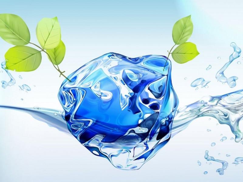 Расскажи всем о своём проекте по изучению и сохранению водоемов!