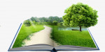 Итоги конкурса «Уроки экологического мастерства»