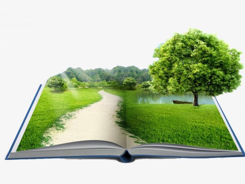 «Уроки экологического мастерства» - 2021