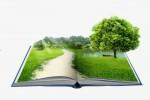 «Уроки экологического мастерства» (республиканский конкурс)