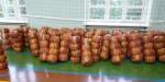 О реализации проекта Школьной баскетбольной лиги «КЭС-БАСКЕТ» среди команд общеобразовательных организаций Республики Карелия