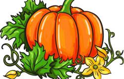 Приглашаем стать участниками праздника урожая «Агрофест»