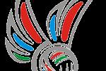 Соревнования среди команд общеобразовательных учреждений Республики Карелия по волейболу «Серебряный мяч»